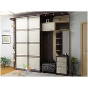 Шкафы-купе,кухни, корпусная мебель фото