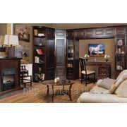Набор мебели для гостиной Орион фото