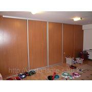 Двери купе в гардеробную комнату. фото