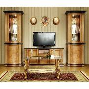 Программа корпусной мебели Венеция фото