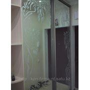 Раздвижные двери для шкафов фото