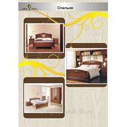 Спальня из массива дерева фото