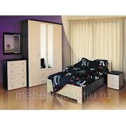 Изготовление мебели на заказ - кухни, шкафы-купе, спальни фото