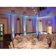 Прокат и аренда светодиодных голов на свадьбу. Комплект №32 фото