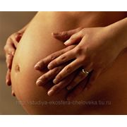 Занятия для беременных индивидуальные фото