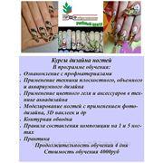 Курсы дизайна ногтей фото