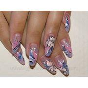 Курсы росписи ногтей акриловыми красками фото