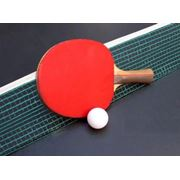 Настольный теннис фото
