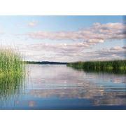 Рыбалка на озере Синеглазово фото