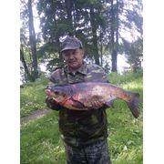 Организация рыбалки фото