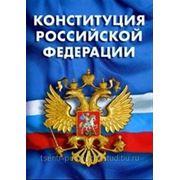 Охрана конституции РФ, курсовая фото