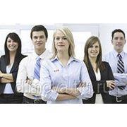 Сотрудники в офис фото