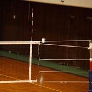 Антенны волейбольные с чехлами фото