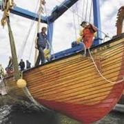 Строительство деревянных яхт, катеров, лодок, предназначенных для речных и морских круизов. фото