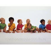 Изучение состояния фонетико-фонематической стороны речи у дошкольников 4-5 лет с нарушениями речи фото