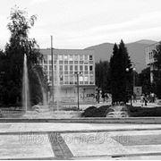 Курсовая по муниципальному праву фото