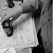 Право государственной и муниципальной службы (курсовая работа) фото