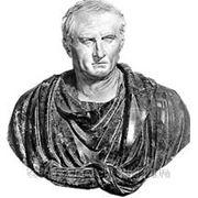 Политико - правовая теория Цицерона, диплом фото