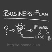 Бизнес-план по открытию предприятия (базовый) фото