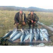 Рыбалка. фото