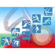 Оценка эфективности деятельности спортивной организации фото