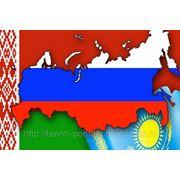 Таможенный союз России, Казахстана, Белоруссии и Украины: особенности развития, диплом фото