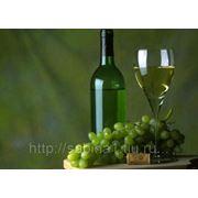 """Питательная программа """"Белое вино"""" фото"""