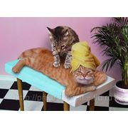 Общий оздоровительный массаж фото