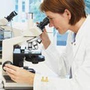 Мазок на атипичные клетки фото