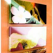 Картины на холсте в багете