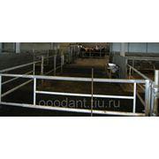 Ограждения для крупно рогатого скота