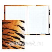 Блокнот А6 80л. тв.обложка Тигровый BRAUBERG фото