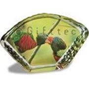 Фото в кристалле Веер-камень фото