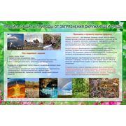 Правила защиты природы от загрязнения окружающей среды