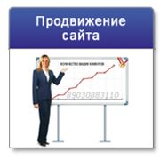 фото предложения ID 7522191