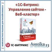 «1С-Битрикс: Управление сайтом - Веб-кластер»