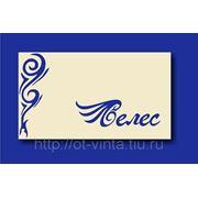 "Логотип салона красоты ""Велес"" фото"