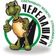 Логотип для страховой компании фото