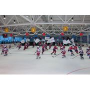 Ледовая арена «МегаЛёд» фото