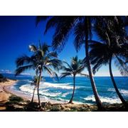 Летний отдых в Доминиканской республике фото
