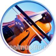фото предложения ID 7547533