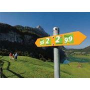 Активные туры в Швейцарию летом фото