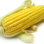 Кукуруза. Поставки кукурузы на ФОБе (FOB) фото