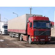 Вольво F12 до 20 т., 86 куб. м., тент (Новополоцк, РБ, РФ) фото