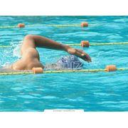 Обучение плаванию фото