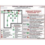 Фотолюминесцентный локальный план эвакуации по ГОСТ Р 12.2.143-2009 фото
