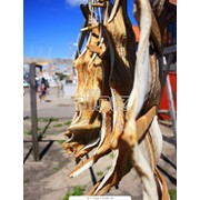 Сушено-вяленая рыба фото