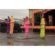 Цветные ходулисты. фото
