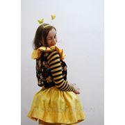 Пчелка Майя. фото