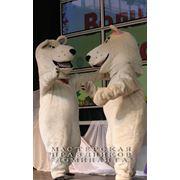 Праздник в Новосибирске с медвежонком Мосей и Босей фото